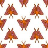 Άνευ ραφής σχέδιο με τους ζωηρόχρωμους σκώρους στο ύφος κινούμενων σχεδίων Πεταλούδα γραφική ανασκόπηση απλή απεικόνιση αποθεμάτων