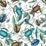 Άνευ ραφής σχέδιο με τους κανθάρους, τους κλάδους και τα λουλούδια watercolor απεικόνιση αποθεμάτων