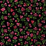 Άνευ ραφής σχέδιο με τους κλάδους cowberries, που χρωματίζονται στο watercolor απεικόνιση αποθεμάτων