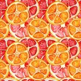 Άνευ ραφής σχέδιο με το γκρέιπφρουτ και το πορτοκάλι διανυσματική απεικόνιση