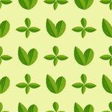 Άνευ ραφής σχέδιο με το πράσινο φύλλων διανυσματικό απεικόνισης φύσης φύλλων σχεδίου floral υπόβαθρο μόδας θερινών φυτών υφαντικό Στοκ Εικόνα