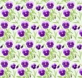 Άνευ ραφής σχέδιο με το viola λουλουδιών Στοκ Εικόνες