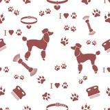 Άνευ ραφής σχέδιο με poodle τη σκιαγραφία, χτένα, περιλαίμιο, διαδρομή σκυλιών ελεύθερη απεικόνιση δικαιώματος