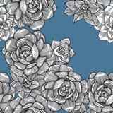 Άνευ ραφής σχέδιο με succulent graphics συρμένο χέρι απεικόνιση αποθεμάτων