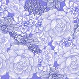 Άνευ ραφής σχέδιο με succulent graphics συρμένο χέρι διανυσματική απεικόνιση