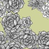 Άνευ ραφής σχέδιο με succulent graphics E απεικόνιση αποθεμάτων