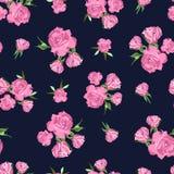 Άνευ ραφής σχέδιο στο σκούρο μπλε υπόβαθρο φυσικός ρόδινος λουλουδιών ομορφιάς στενός αυξήθηκε επάνω Στοκ Εικόνες