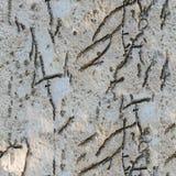 Άνευ ραφής σχέδιο της φυσικής πέτρας με μια αυξημένη σύσταση Στοκ φωτογραφία με δικαίωμα ελεύθερης χρήσης