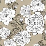Άνευ ραφής σχέδιο του άγριου κλάδου ανθών τριαντάφυλλων που απομονώνεται σε καφετή Συρμένοι χέρι κλάδοι ανθών με την άσπρη σκιαγρ ελεύθερη απεικόνιση δικαιώματος