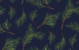 Άνευ ραφής σχέδιο του κομψού, νέου δέντρου έτους Χριστουγέννων πεύκων φυσικού απεικόνιση αποθεμάτων