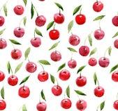 Άνευ ραφής σχέδιο των κερασιών watercolor Στοκ εικόνες με δικαίωμα ελεύθερης χρήσης