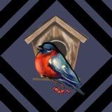 Άνευ ραφής σχέδιο των κόκκινων μούρων και bullfinches Κατάλληλος για το ύφασμα ελεύθερη απεικόνιση δικαιώματος
