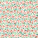 Άνευ ραφής σχέδιο των παπαρουνών στη χλόη Υπόβαθρο κρητιδογραφιών υπό μορφή ξέφωτου λουλουδιών E ελεύθερη απεικόνιση δικαιώματος