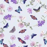 Άνευ ραφής σχέδιο των πεταλούδων και των λουλουδιών Στοκ εικόνα με δικαίωμα ελεύθερης χρήσης