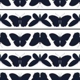 Άνευ ραφής σχέδιο των πεταλούδων σε ένα άσπρο υπόβαθρο Ελεύθερη απεικόνιση δικαιώματος