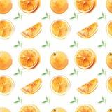 Άνευ ραφής σχέδιο των πορτοκαλιών watercolor με τα φύλλα σε ένα άσπρο υπόβαθρο Στοκ φωτογραφίες με δικαίωμα ελεύθερης χρήσης