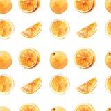 Άνευ ραφής σχέδιο των πορτοκαλιών watercolor σε ένα άσπρο υπόβαθρο Στοκ φωτογραφία με δικαίωμα ελεύθερης χρήσης