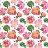 Άνευ ραφής σχέδιο των τριαντάφυλλων watercolor, πράσινα φύλλα Στοκ εικόνα με δικαίωμα ελεύθερης χρήσης