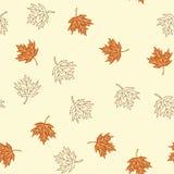 Άνευ ραφής σχέδιο φθινοπώρου με τα καφετιά φύλλα σφενδάμου στο μπεζ backgro Στοκ εικόνα με δικαίωμα ελεύθερης χρήσης