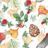 Άνευ ραφής σχέδιο φθινοπώρου με το δασικό θέμα Απεικόνιση Watercolor, χέρι-σχεδιασμός στοκ φωτογραφία με δικαίωμα ελεύθερης χρήσης