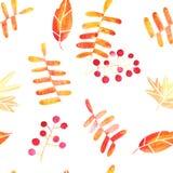 Άνευ ραφής σχέδιο φύλλων φθινοπώρου Watercolor συρμένο χέρι διανυσματική απεικόνιση