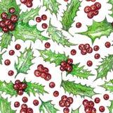 Άνευ ραφής σχέδιο Χριστουγέννων με τα φύλλα και τα κόκκινα μούρα Watercolor της Holly Βοτανικό σχέδιο ανθοδεσμών ζωγραφικής χεριώ Στοκ Εικόνες