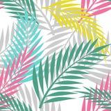 Άνευ ραφής σχέδιο Colorfull φοινίκων Στοκ Εικόνες