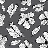 Άνευ ραφής σχέδιο Hibiscus του λουλουδιού στο ύφος δερματοστιξιών Στοκ Φωτογραφίες