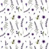 Άνευ ραφής σχέδιο, lavender θέμα Στοκ Φωτογραφία