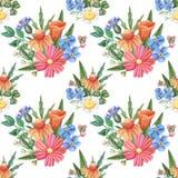 Άνευ ραφής σχέδιο watercolor, άγρια λουλούδια στο λευκό Στοκ φωτογραφία με δικαίωμα ελεύθερης χρήσης