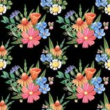 Άνευ ραφής σχέδιο watercolor, άγρια λουλούδια στο Μαύρο Στοκ Εικόνες