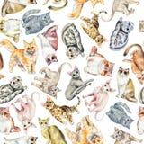 Άνευ ραφής σχέδιο Watercolor με δέκα διαφορετικές φυλές των γατών διανυσματική απεικόνιση