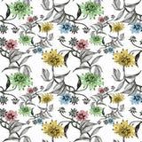 Άνευ ραφής σχέδιο Watercolor με τα ζωηρόχρωμα λουλούδια και τα φύλλα στο άσπρο υπόβαθρο, floral σχέδιο watercolor, λουλούδια μέσα Στοκ φωτογραφία με δικαίωμα ελεύθερης χρήσης
