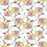 Άνευ ραφής σχέδιο Watercolor με τα ζωηρόχρωμα λουλούδια και τα φύλλα στο άσπρο υπόβαθρο, floral σχέδιο watercolor, λουλούδια μέσα Στοκ Εικόνες