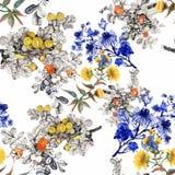 Άνευ ραφής σχέδιο Watercolor με τα ζωηρόχρωμα λουλούδια και τα φύλλα στο άσπρο υπόβαθρο, floral σχέδιο watercolor, λουλούδια μέσα Στοκ φωτογραφίες με δικαίωμα ελεύθερης χρήσης
