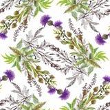 Άνευ ραφής σχέδιο Watercolor με τα ζωηρόχρωμα λουλούδια και τα φύλλα στο άσπρο υπόβαθρο, floral σχέδιο watercolor, λουλούδια μέσα Στοκ Φωτογραφία
