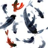 Άνευ ραφής σχέδιο Watercolor με τα ψάρια κυπρίνων Στοκ Εικόνες