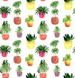 Άνευ ραφής σχέδιο Watercolor με τα houseplants Στοκ εικόνες με δικαίωμα ελεύθερης χρήσης