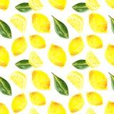 Άνευ ραφής σχέδιο Watercolor με το λεμόνι και τα φύλλα διανυσματική απεικόνιση