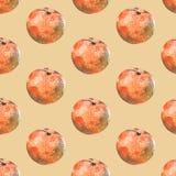 Άνευ ραφής σχέδιο watercolor με tangerines στο μπεζ υπόβαθρο διανυσματική απεικόνιση