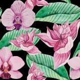 Άνευ ραφής σχέδιο Watercolor των ανθίζοντας ρόδινων λουλουδιών ορχιδεών ελεύθερη απεικόνιση δικαιώματος