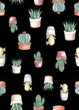 άνευ ραφής σχέδιο watercolor των κάκτων και succulents watercolor στοκ εικόνα