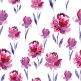 Άνευ ραφής σχέδιο watercolor των ρόδινων λουλουδιών και των πορφυρών φύλλων σε ένα άσπρο υπόβαθρο Στοκ Εικόνα