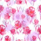 Άνευ ραφής σχέδιο watercolor των ρόδινων λουλουδιών σε ένα άσπρο υπόβαθρο Στοκ Εικόνα