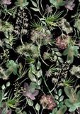 Άνευ ραφής σχέδιο Watercolor, υπόβαθρο με ένα floral σχέδιο Όμορφα εκλεκτής ποιότητας σχέδια των εγκαταστάσεων, λουλούδια, κλάδος στοκ φωτογραφίες με δικαίωμα ελεύθερης χρήσης