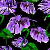 Άνευ ραφής σχέδιο Watercolor Χρωματισμένη χέρι απεικόνιση των τροπικών φύλλων και των λουλουδιών Τροπικό θερινό μοτίβο με το τροπ Στοκ Εικόνες