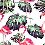 Άνευ ραφής σχέδιο Watercolor Χρωματισμένη χέρι απεικόνιση των τροπικών φύλλων και των λουλουδιών Τροπικό θερινό μοτίβο με το τροπ Στοκ εικόνες με δικαίωμα ελεύθερης χρήσης