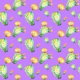 Άνευ ραφής σχέδιο Watercolor Άνευ ραφής floral υπόβαθρο σχεδίων κάκτων Watercolor, ταπετσαρία, ύφασμα ultraviolet Στοκ Φωτογραφίες