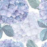 Άνευ ραφής σχέδιο watercolor Hydrangea Στοκ Φωτογραφίες