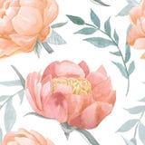 Άνευ ραφής σχέδιο watercolor Peony ανθίζοντας Στοκ Φωτογραφία